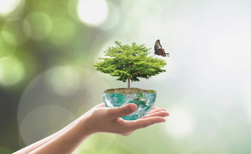 biodiversite energies renouvelables 800x490